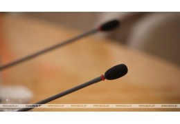 Белорусский парламент расширит практику проведения онлайн-переговоров с коллегам