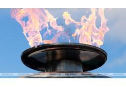 Вопрос о тарифах на прокачку газа в ЕАЭС будет решаться на уровне президентов