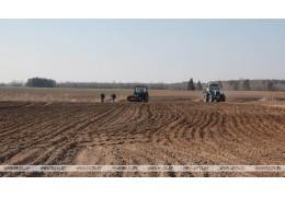 Погода в начале мая будет более благоприятной для развития сельхозкультур