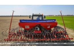 Сев льна завершается в Беларуси