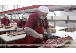 Глубокский мясокомбинат в I квартале увеличил экспорт продукции почти в 5 раз