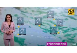 Прогноз погоды на 11 ноября: слабый гололед