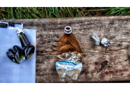 Выращивал марихуану на даче в Слонимском районе: расследуется уголовное дело